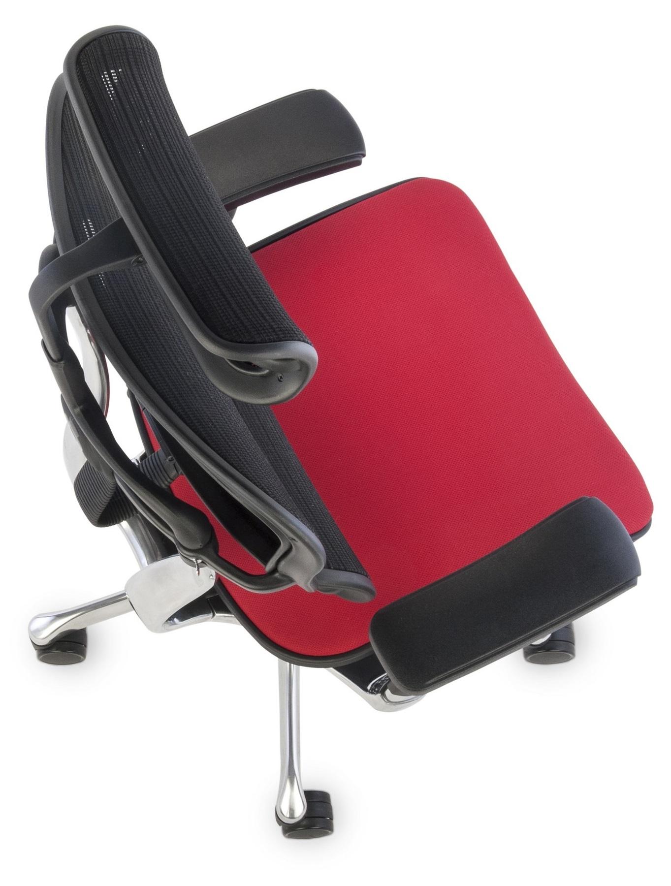 Ergohuman Plus Elite Color,Backrest: KMD 31, Seat: Flex FX02