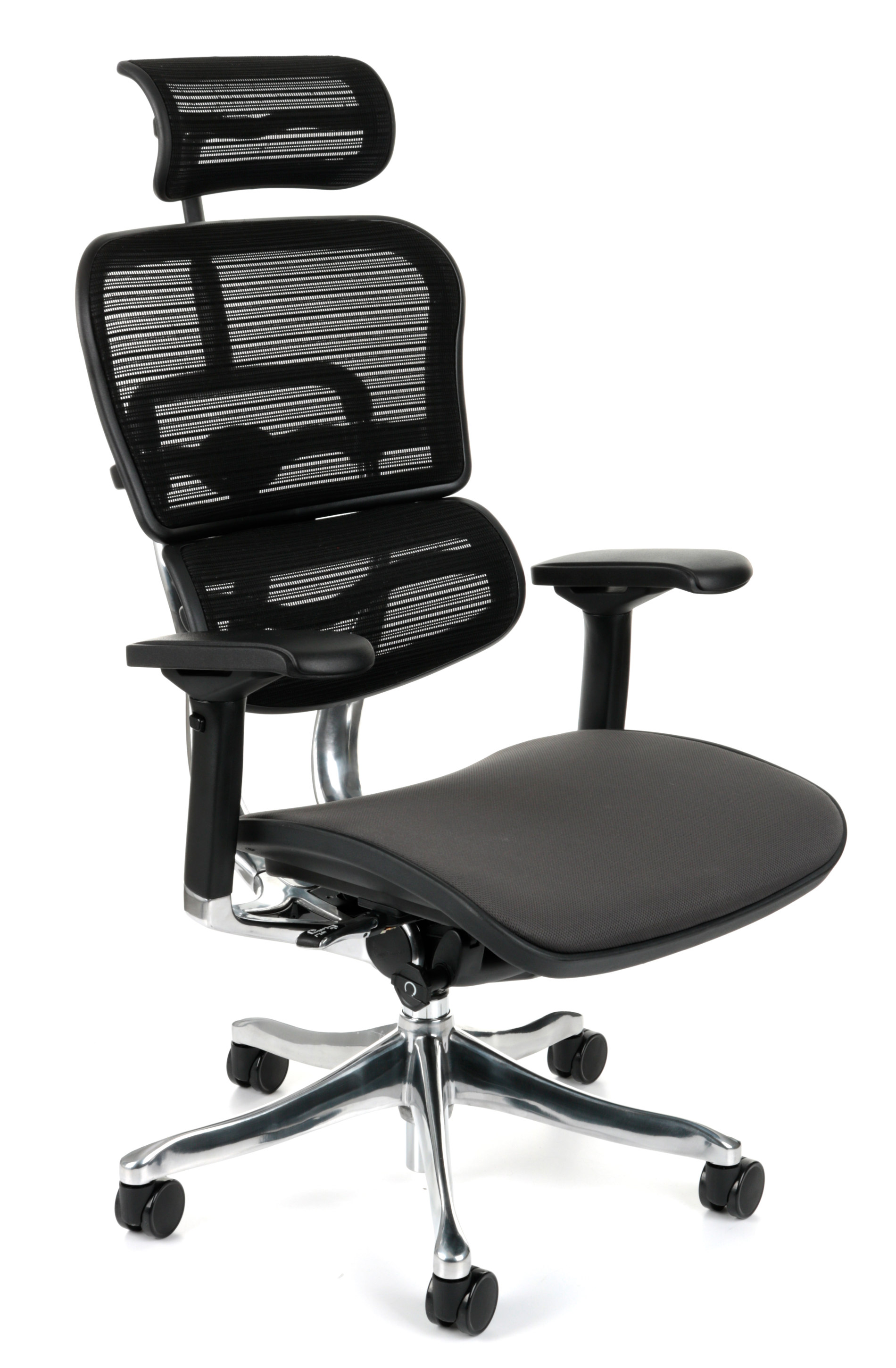 Ergohuman Plus Elite Color, Backrest: KMD31 Seat: Flex FX09