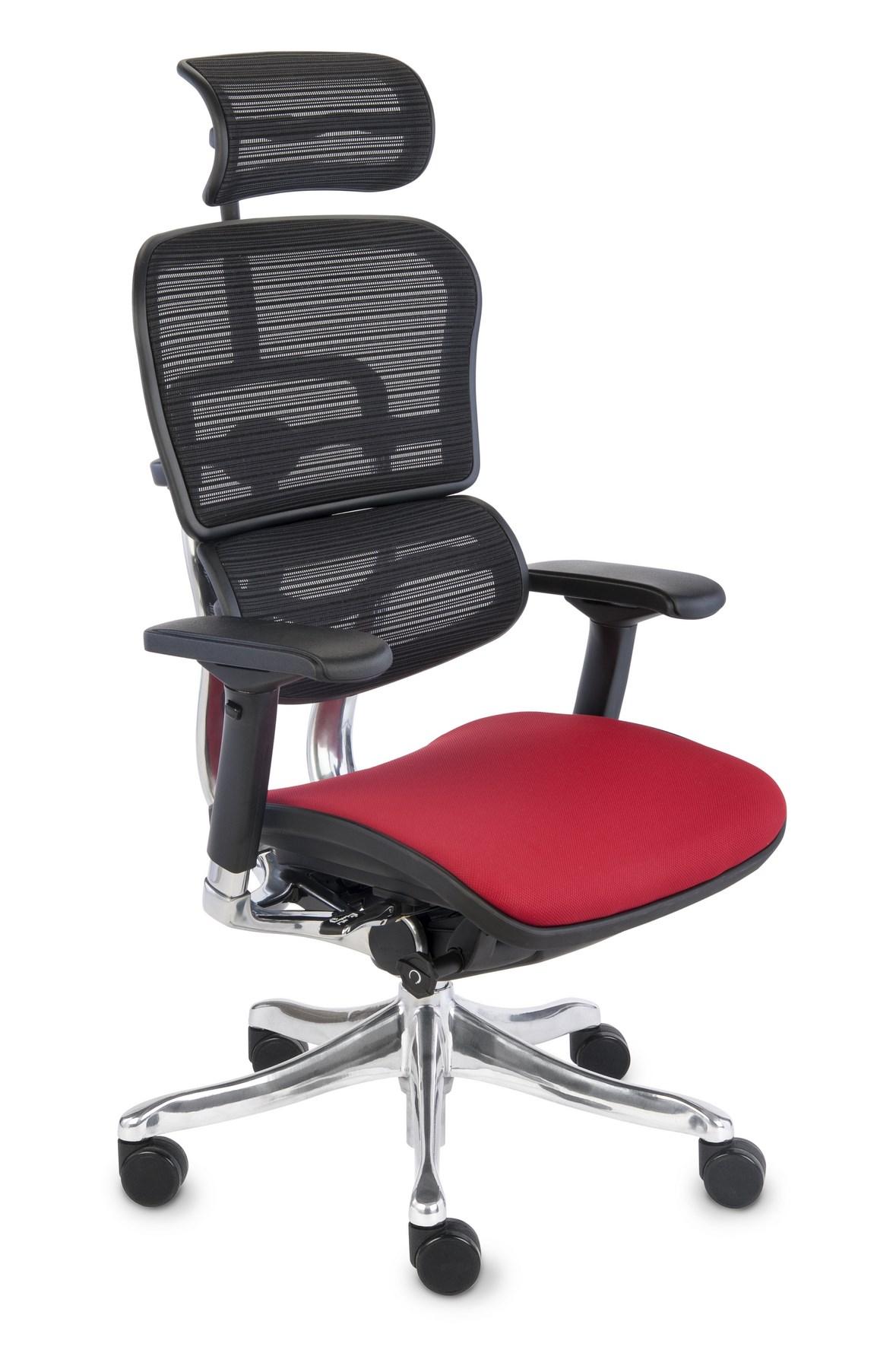 Ergohuman Plus Elite Color, Backrest: KMD 31, Seat: Medley MD02