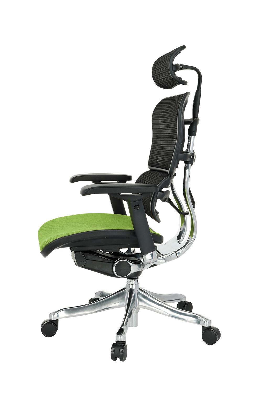 Ergohuman Plus Elite Color, Backrest: KMD 31, Seat: Medley MD04