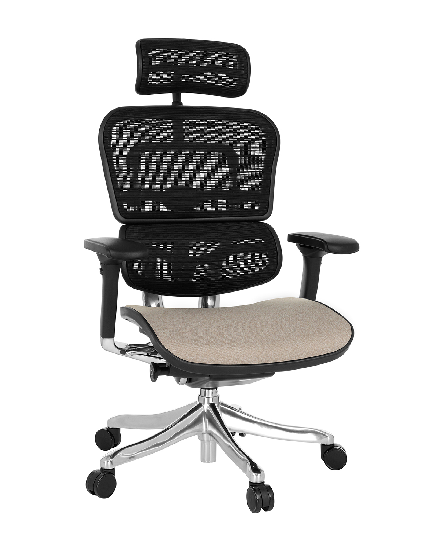 Ergohuman Plus Elite Color, Backrest: KMD 31, Seat: Medley MD06