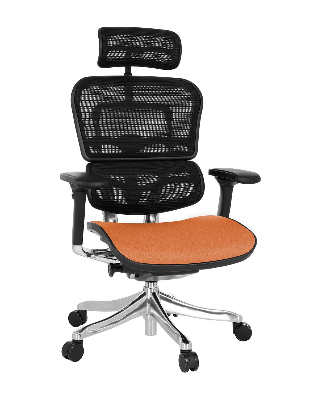 Ergohuman Plus Elite Color, Backrest: KMD 31, Seat: Medley MD07