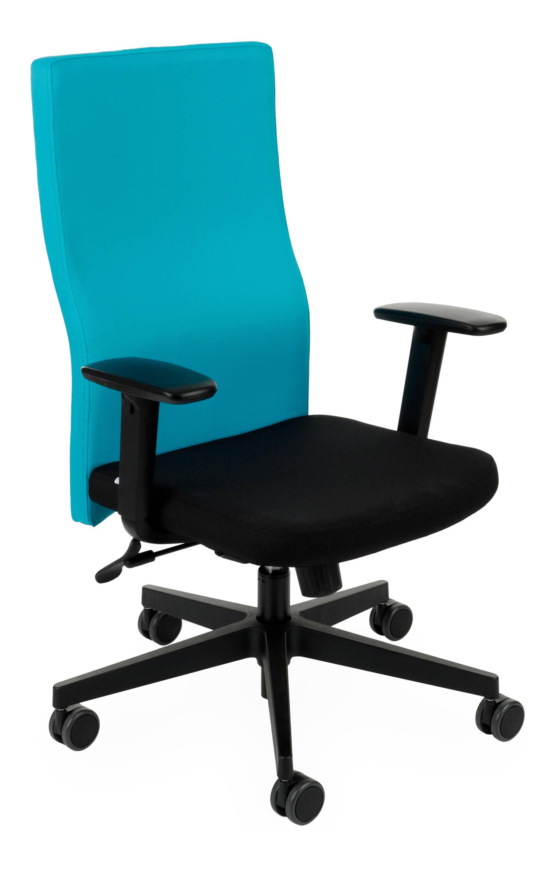 Team Plus black, Backrest: Note N10 Seat: Note N01